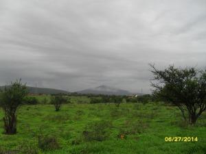 La presita y su entorno, 30. Otra de los verdes prados en terreno otrora semiárido y el Cerro Grande con neblina